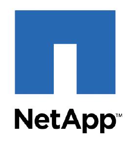 NetApp India