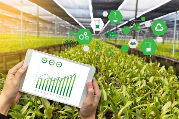 Agri-entrepreneurship needs to be strengthened for more profitable prospects