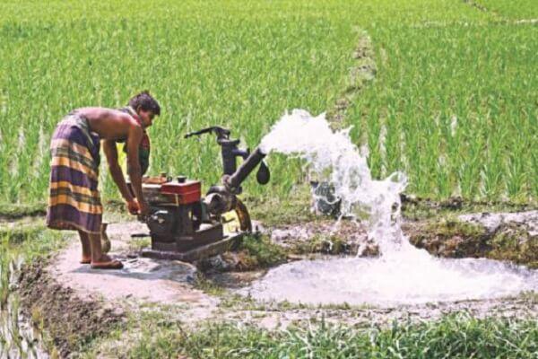 Telangana devises ways to reduce irrigation water usage for paddy
