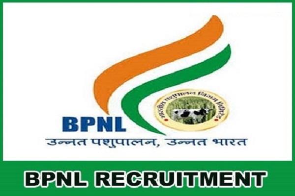 BNPL Recruitment 2020