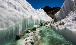 Shrinking Himalayan